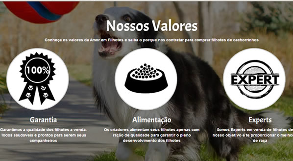 imagem da segunda pagina do site Amor em Filhotes criado por nós da SizeWeb